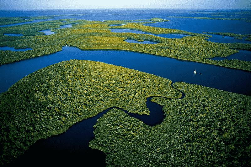 Everglades Park em Miami