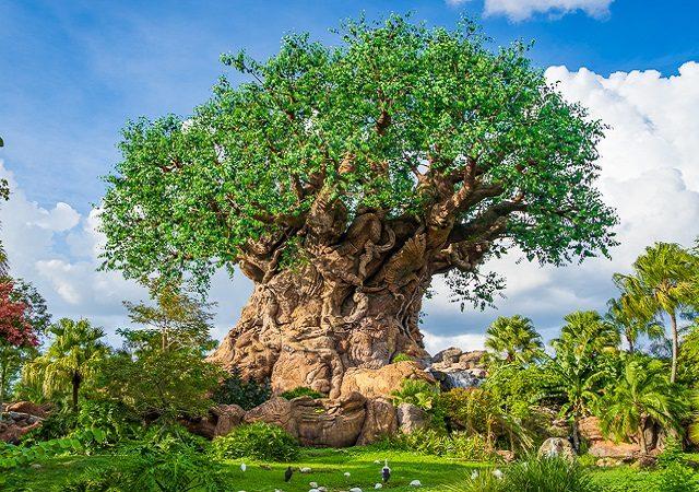 Parque Animal Kingdom na Disney em Orlando
