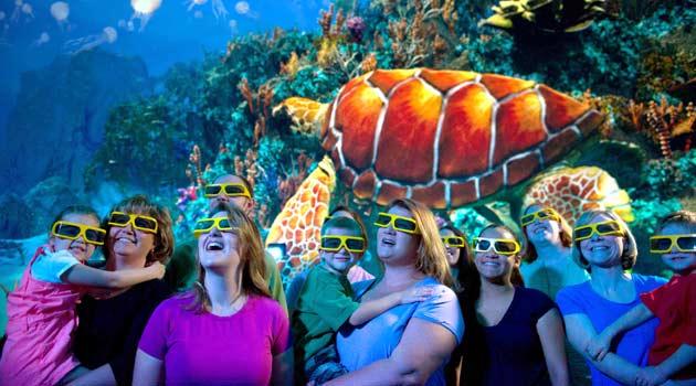 Turtle Trek no Sea World