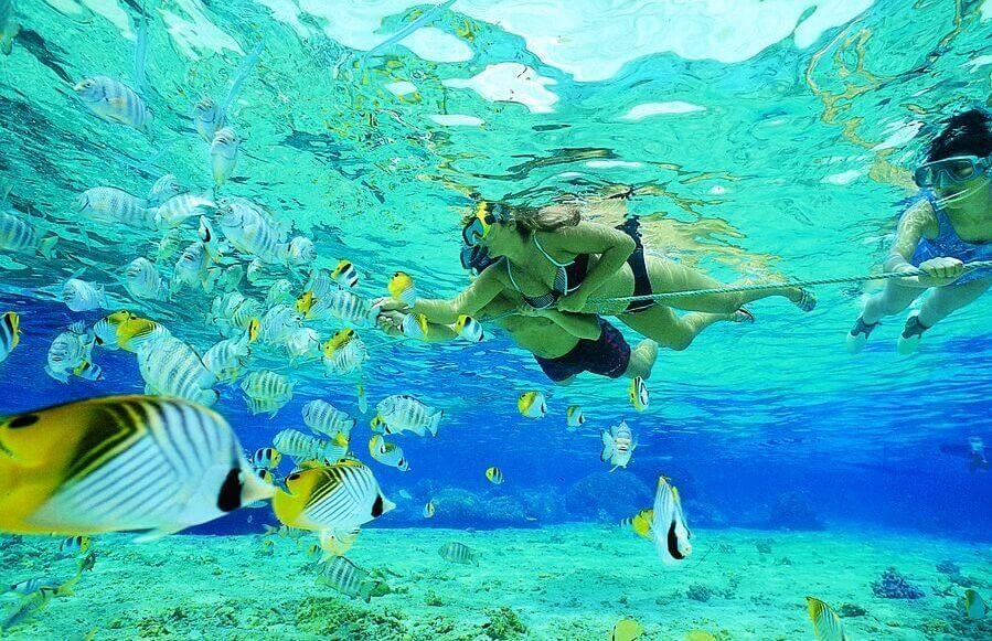 Ilha de Key Largo