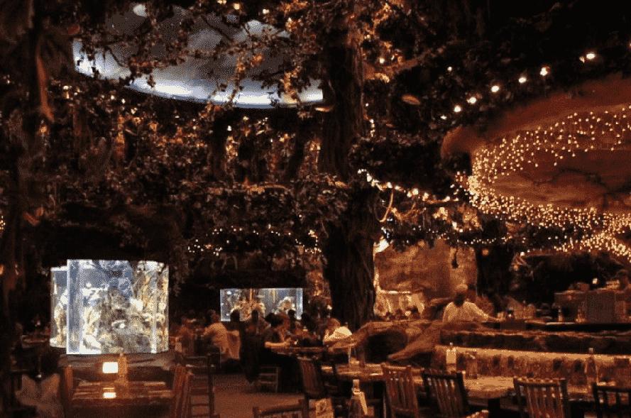 Restaurante Rainforest Cafe na Disney em Orlando