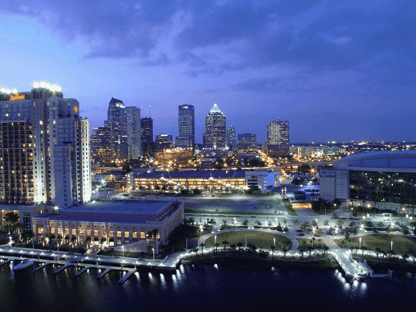 Tampa a noite