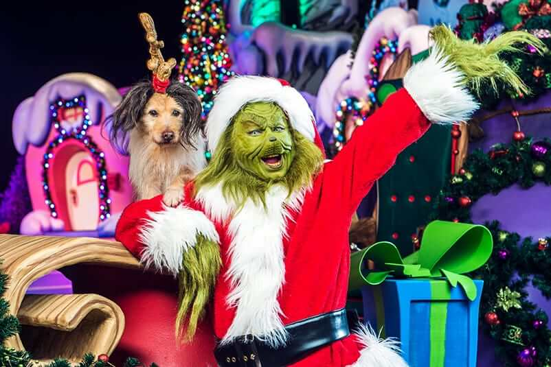 Show Grinchmas Who-liday Spectacular
